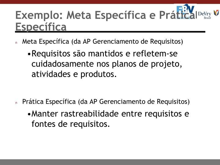 Exemplo: Meta Específica e Prática Específica