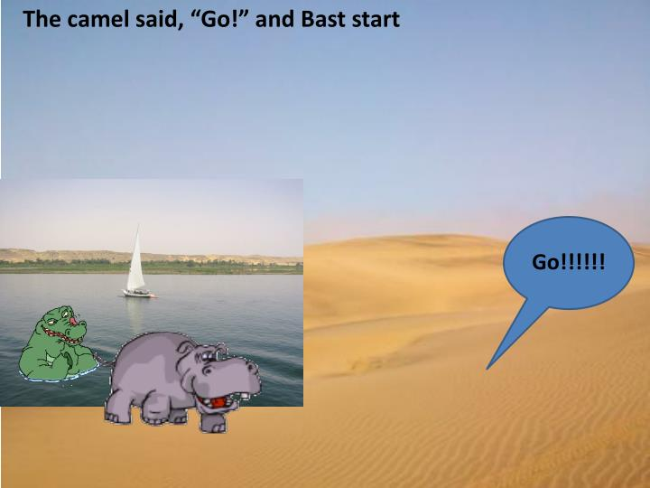 "The camel said, ""Go!"" and"