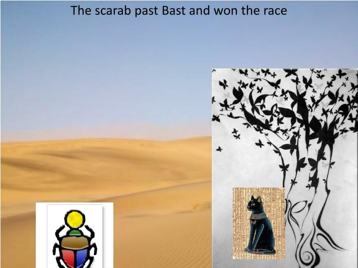 The scarab past