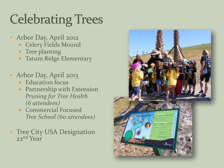 Celebrating Trees
