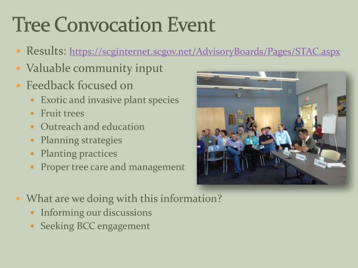 Tree Convocation Event