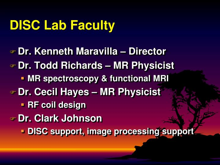 Disc lab faculty