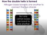 how the double helix is formed