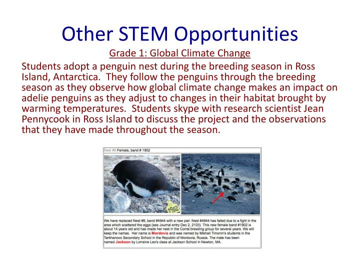 Other STEM Opportunities