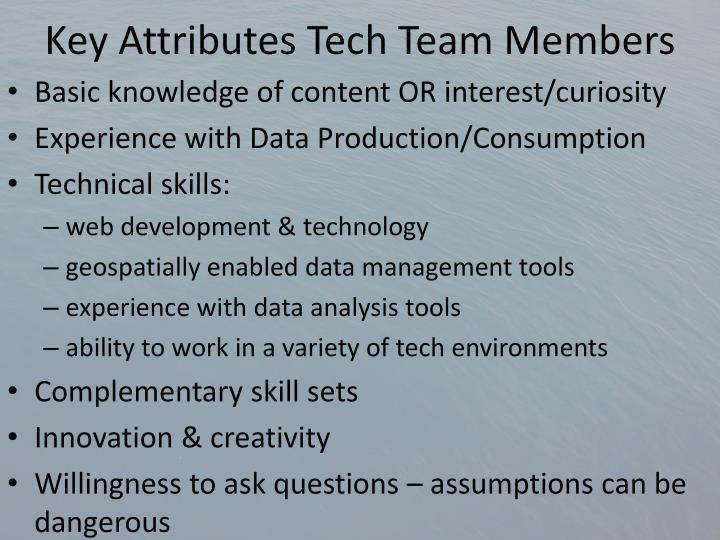 Key Attributes Tech Team Members