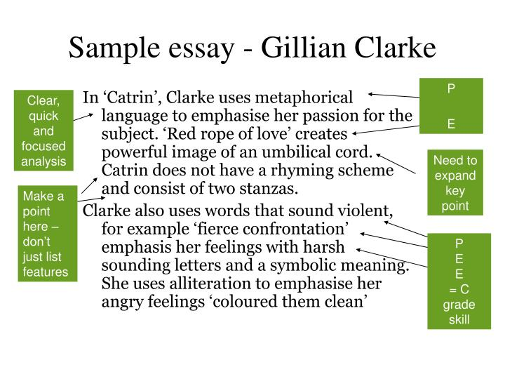 Sample essay - Gillian Clarke