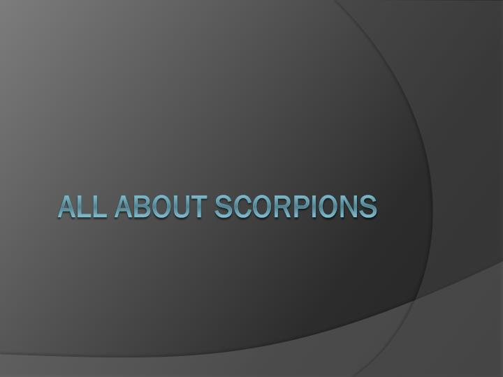 All a bout scorpions