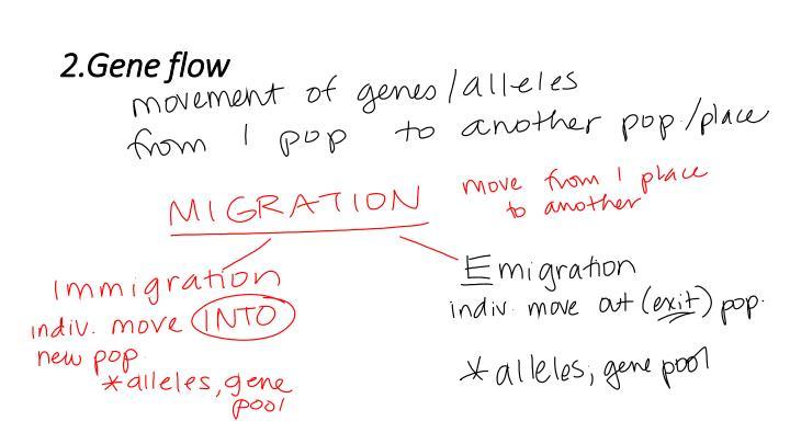 2.Gene flow