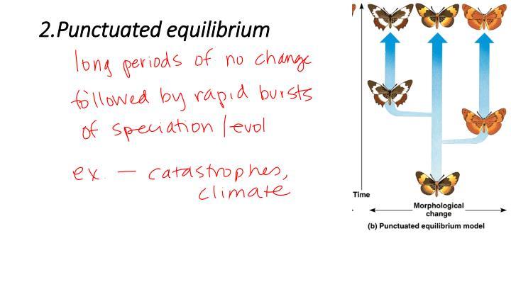 2.Punctuated equilibrium