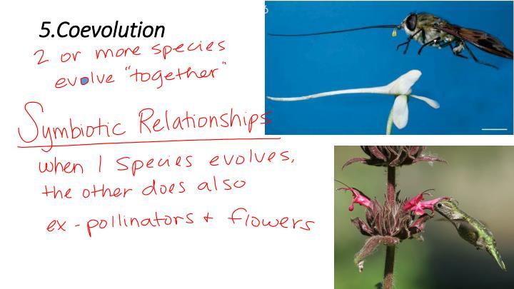 5.Coevolution