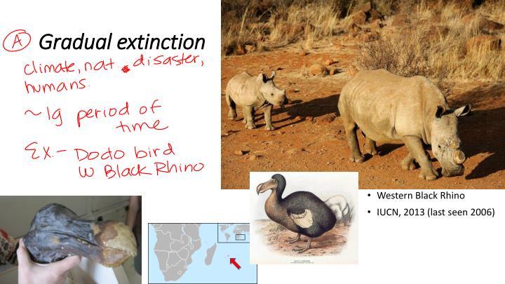 Gradual extinction