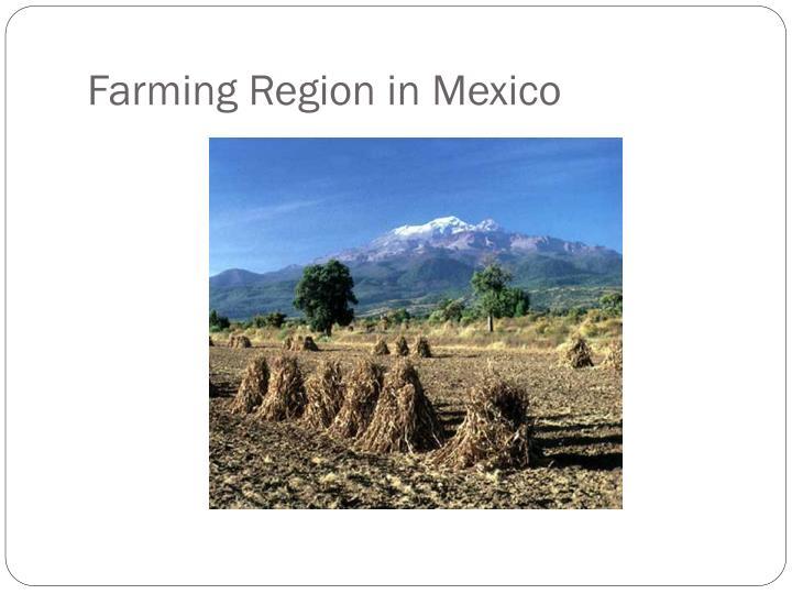 Farming Region in Mexico