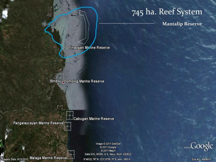 745 ha. Reef System