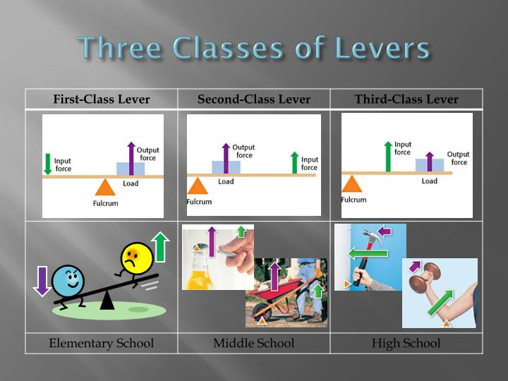 Three Classes of Levers