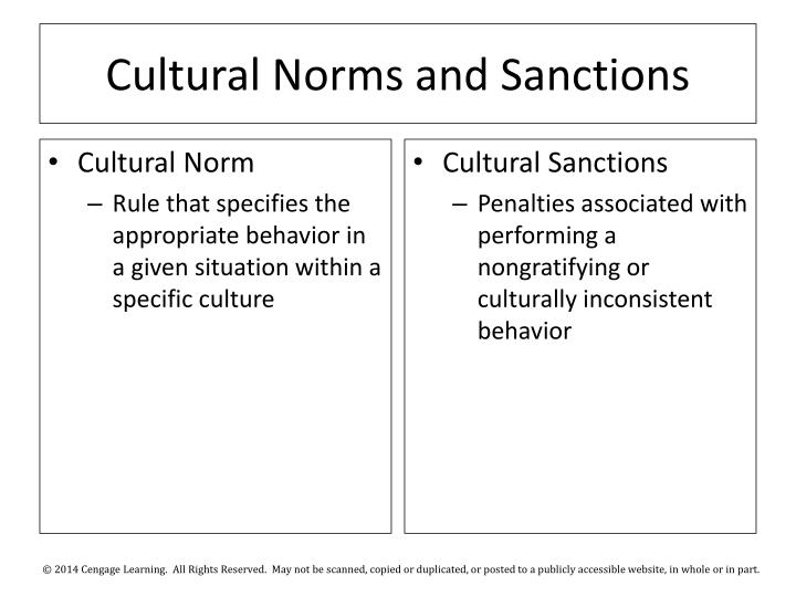 Cultural Norms and Sanctions