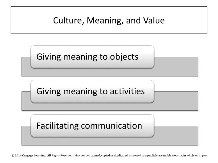 Culture, Meaning, and Value