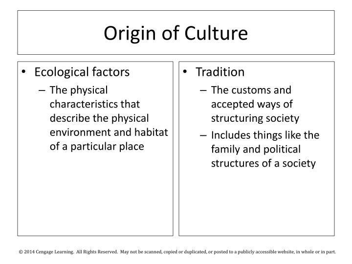 Origin of Culture