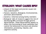 etiology what causes bpd