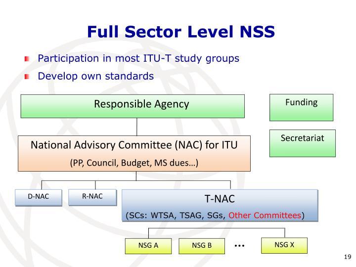 Full Sector Level NSS