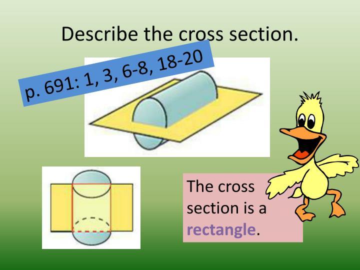 Describe the cross section.