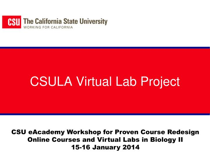 Csula virtual lab project