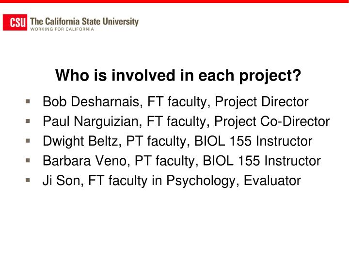 Who is involved in each project?