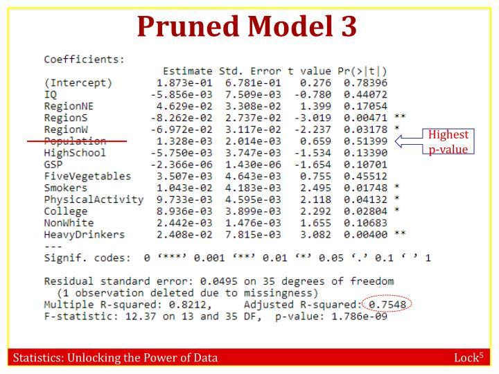 Pruned Model 3