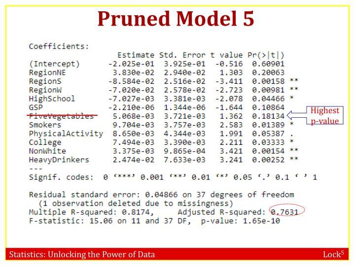 Pruned Model 5