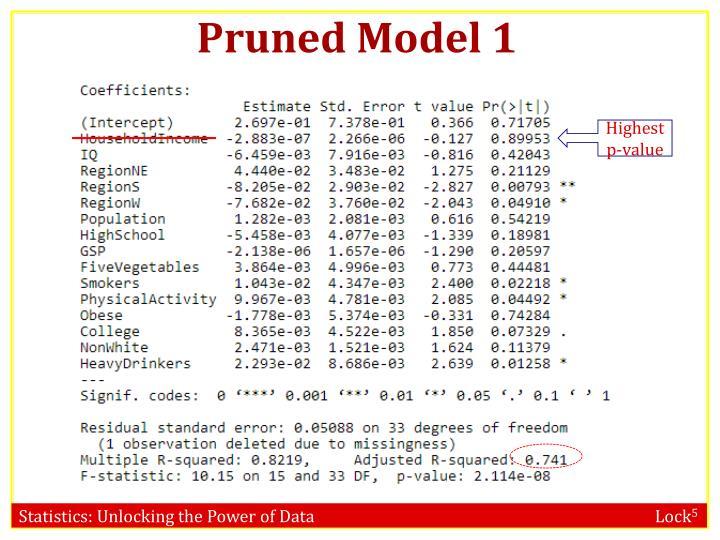 Pruned Model 1