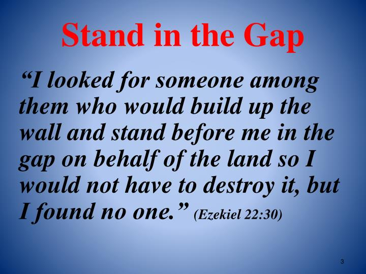 Stand in the gap2