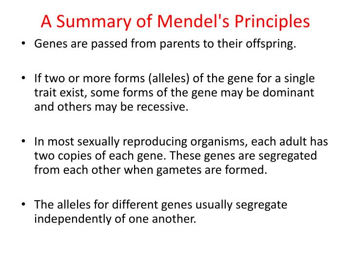 A Summary of Mendel's Principles