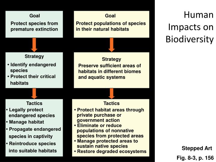 Human impacts on biodiversity