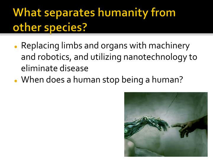 What separates humanity from other species?
