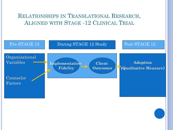 Relationships in Translational Research, Aligned with Stage -12 Clinical Trial