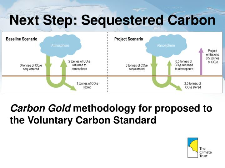 Next Step: Sequestered Carbon