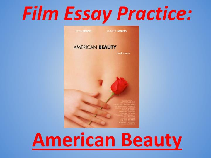 American beauty essays