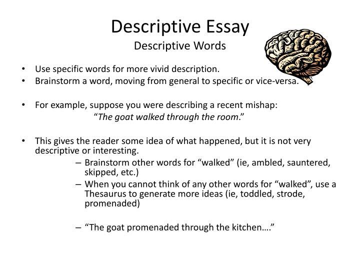 descriptive essay of 300 words