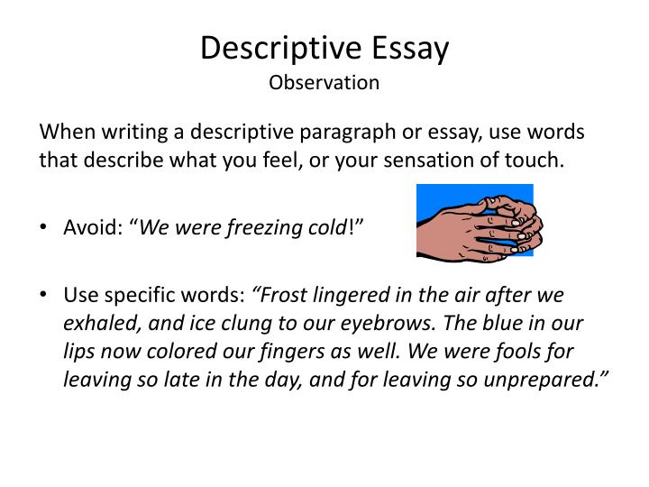 essay writing describe a person