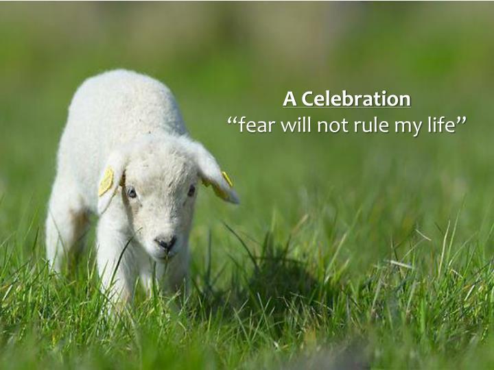 A Celebration