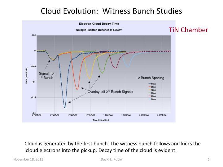 Cloud Evolution:  Witness Bunch Studies