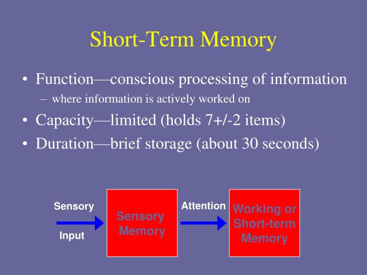 Short Term Memory : Ppt stage model of memory powerpoint presentation id