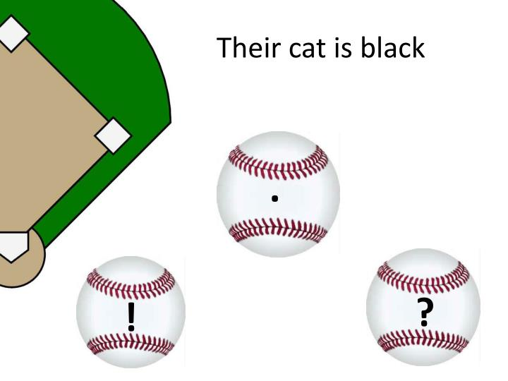 Their cat is black
