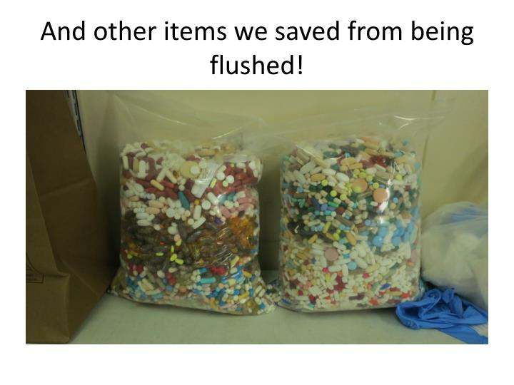 And other items we saved from being flushed!