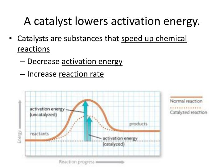 A catalyst lowers activation energy.