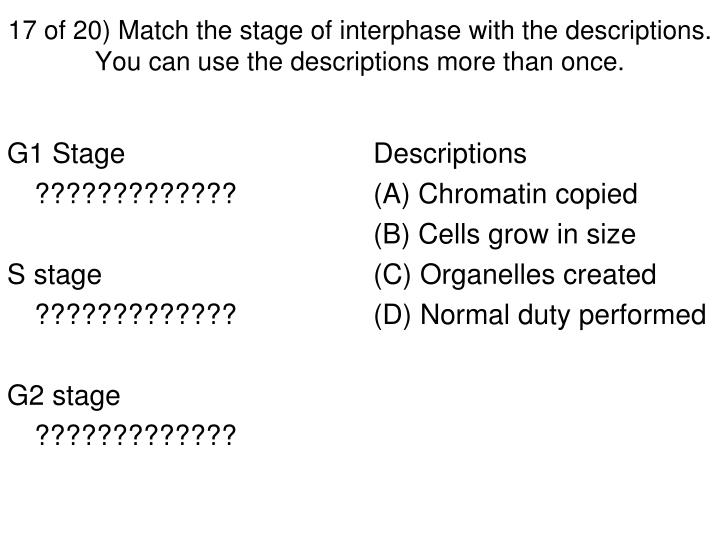 17 of 20) Match the stage of interphase with the descriptions. You can use the descriptions more than once.