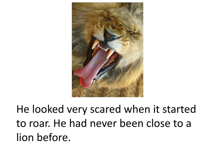 He looked very scared when it started to roar. He had never been close to a lion before.