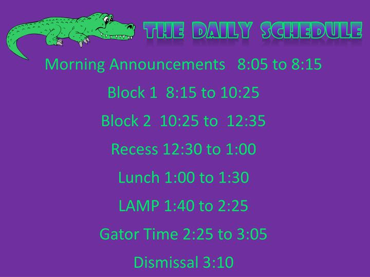 The  Daily  schedule