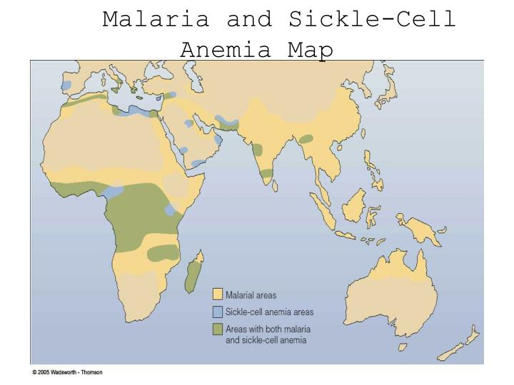 Malaria and sickle cell anemia map
