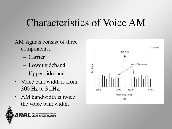 Characteristics of Voice AM