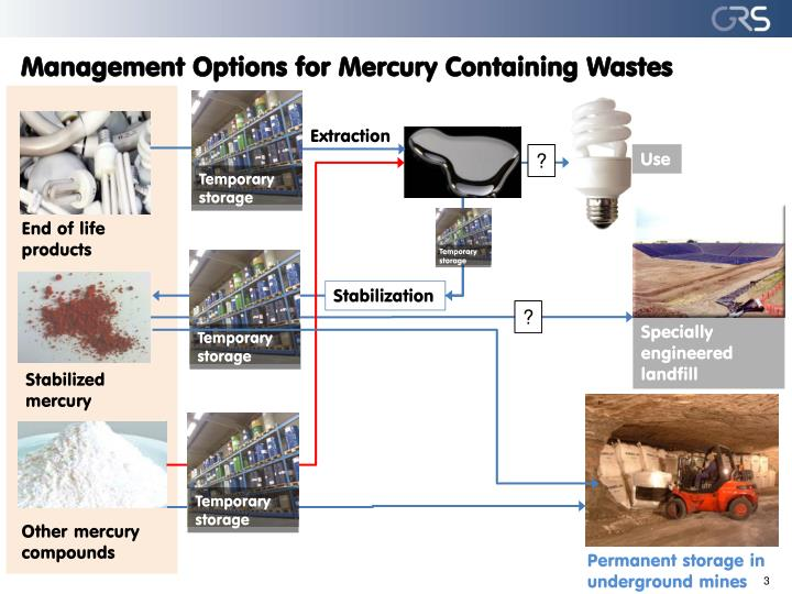 Management options for mercury containing wastes